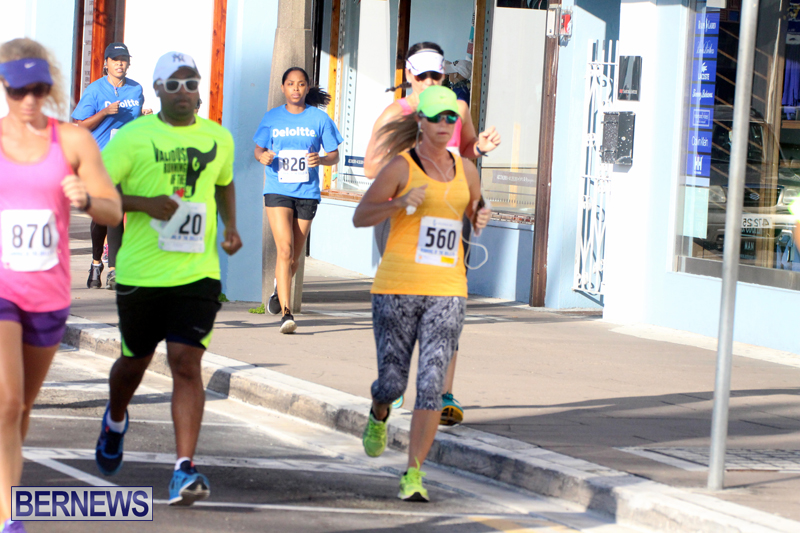 Running-of-the-Bulls-Bermuda-September-2015-15