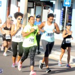 Running of the Bulls Bermuda September 2015 (16)