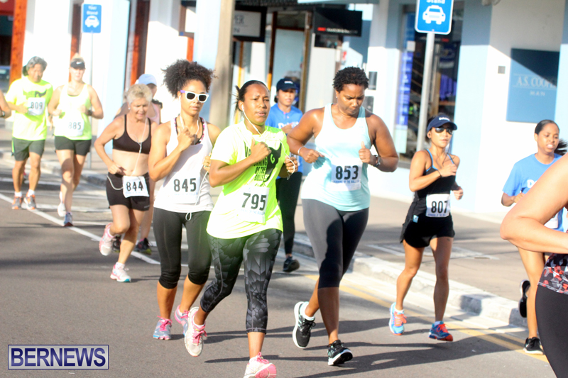 Running-of-the-Bulls-Bermuda-September-2015-16