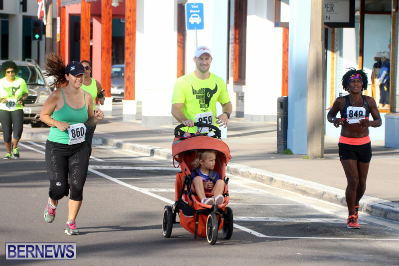 Running-of-the-Bulls-Bermuda-September-2015-17