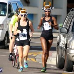 Running of the Bulls Bermuda September 2015 (18)