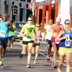 Running of the Bulls Bermuda September 2015 (3)