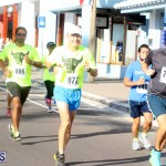 Running of the Bulls Bermuda September 2015 (5)