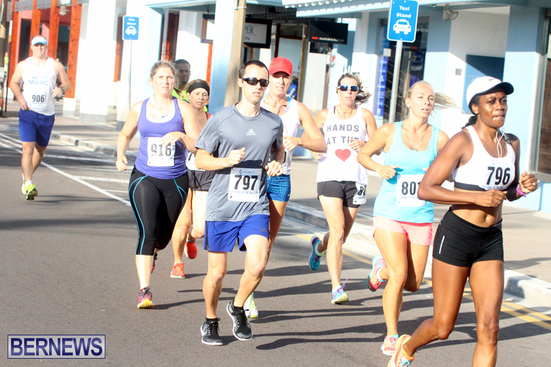 Running-of-the-Bulls-Bermuda-September-2015-9