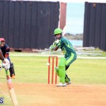 Weekend Cricket Bermuda September 20 2015 (5)