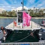 AC World Series Bermuda Oct 18 2015 Harbour (40)