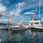 AC World Series Bermuda Oct 18 2015 Harbour (42)