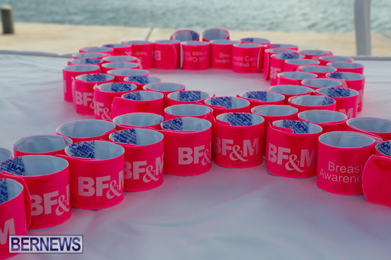 BFM-Breast-Cancer-Awareness-Walk-Bermuda-October-21-2015-16