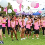 BF&M Breast Cancer Awareness Walk Bermuda, October 21 2015-49