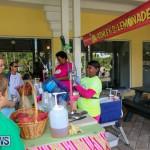 BUEI Halloween Bermuda, October 24 2015 (4)