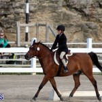 Bermuda Dressage Show October 3 2015 (1)