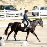 Bermuda Dressage Show October 3 2015 (11)