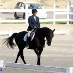 Bermuda Dressage Show October 3 2015 (14)