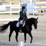 Bermuda Dressage Show October 3 2015 (15)