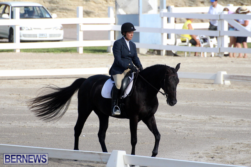Bermuda-Dressage-Show-October-3-2015-15