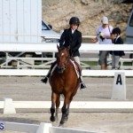 Bermuda Dressage Show October 3 2015 (4)