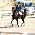 Bermuda Dressage Show October 3 2015 (9)