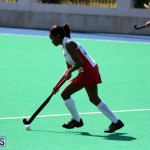Budgies and Swallows Field Hockey Bermuda October 2015 (1)