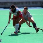 Budgies and Swallows Field Hockey Bermuda October 2015 (4)