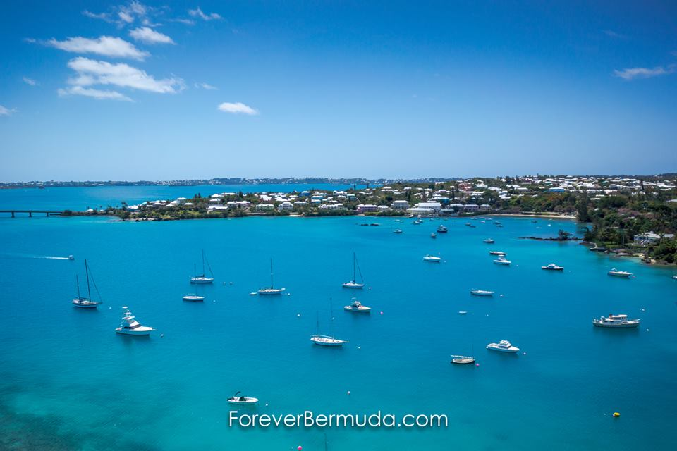 ForB Top Bermuda Generic October 2015