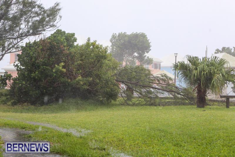 Hurricane-Joaquin-Bermuda-October-4-2015-23