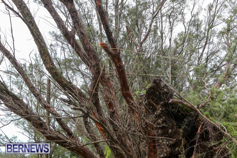 Hurricane-Joaquin-Bermuda-October-5-2015-13