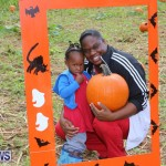 J&J Produce Pick Your Own Pumpkins Bermuda, October 23 2015-68