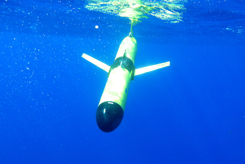 Jack-diving1-09-17-15