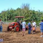 National Trust Farmfest Bermuda, October 31 2015-1