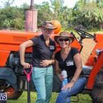 National Trust Farmfest Bermuda, October 31 2015-51