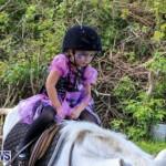 National Trust Farmfest Bermuda, October 31 2015-56