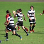 Rugby October 14 2015 (10)