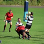 Rugby October 14 2015 (11)