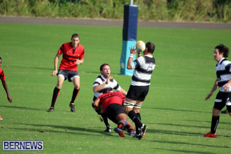 Rugby-October-14-2015-11
