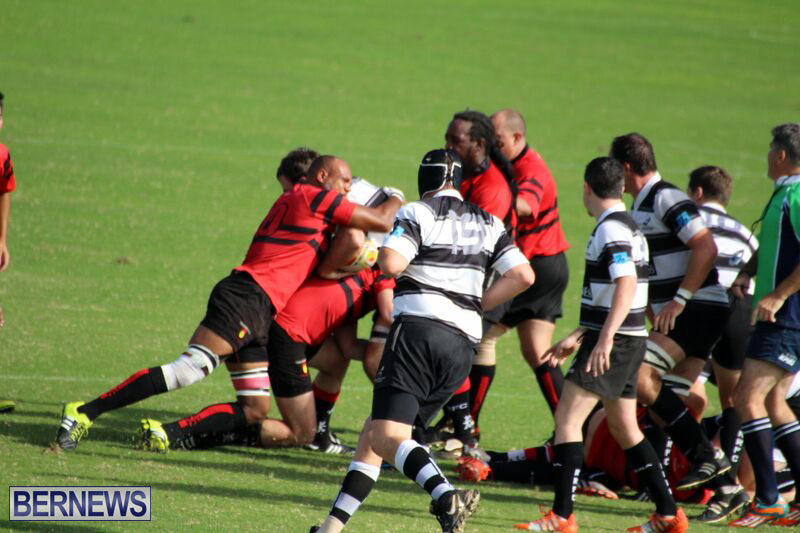 Rugby-October-14-2015-8