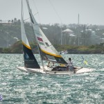 argo-group-gold-cup-sailing-151