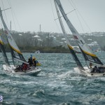 argo-group-gold-cup-sailing-80
