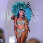 2016 Bermuda Heroes Weekend Launch, November 20 2015-1