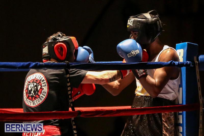 Andre Lambe vs Shane Mello Boxing Match Bermuda, November 7 2015-13