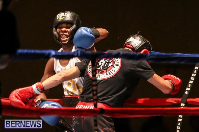 Andre Lambe vs Shane Mello Boxing Match Bermuda, November 7 2015-3