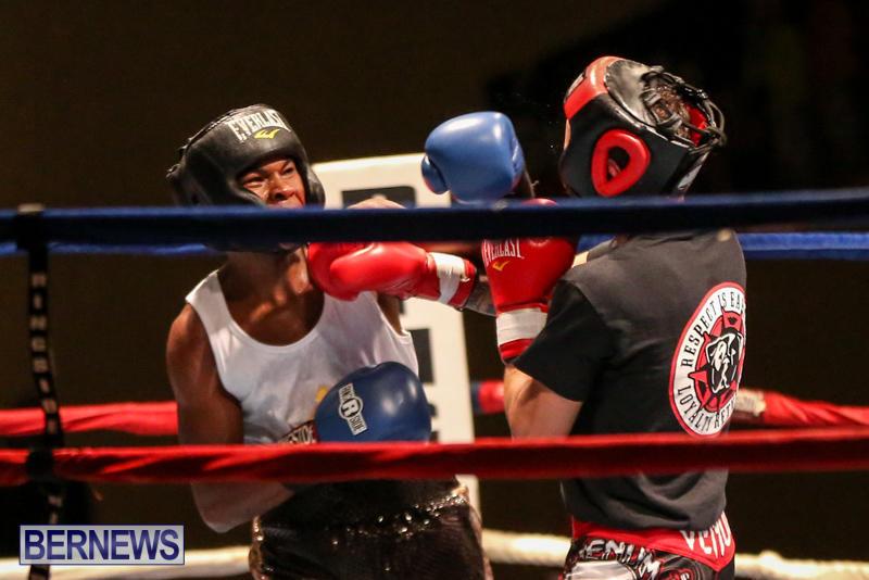 Andre Lambe vs Shane Mello Boxing Match Bermuda, November 7 2015-7