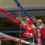 Bermuda Boxing JM Nov 2015 (1)
