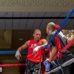 Bermuda Boxing JM Nov 2015 (10)