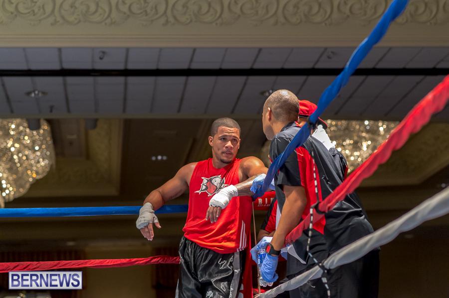 Bermuda-Boxing-JM-Nov-2015-10