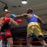Bermuda Boxing JM Nov 2015 (100)