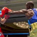 Bermuda Boxing JM Nov 2015 (116)