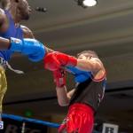 Bermuda Boxing JM Nov 2015 (117)