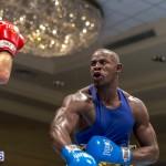 Bermuda Boxing JM Nov 2015 (118)