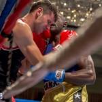 Bermuda Boxing JM Nov 2015 (119)
