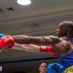 Bermuda Boxing JM Nov 2015 (121)